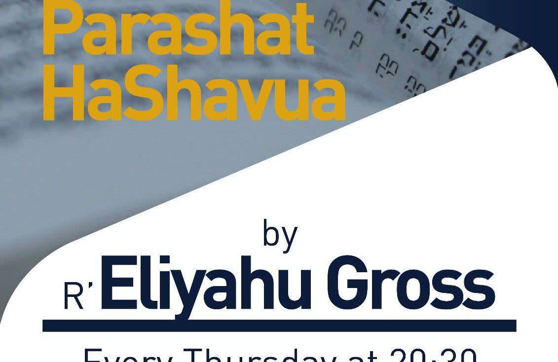 Weekly Parsha Shiur w. R' Eliyahu Gross 1